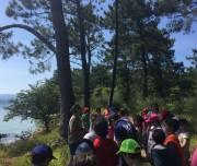 Ruta Kayak y Senderismo en Cortegada